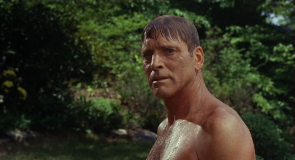 The Swimmer 004