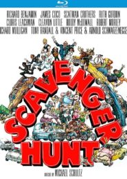 bluray-scavengerhunt-900x1091